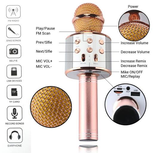 Microfon-Boxa WS858